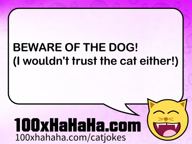 BEWARE OF THE DOG! / (I wouldn't trust the cat either!)