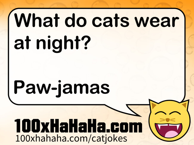 What do cats wear at night? / / Paw-jamas
