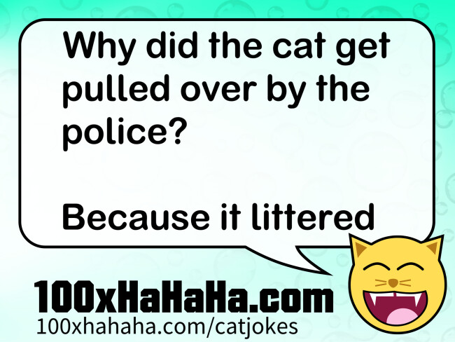 Why did the cat get pulled over by the police? / / Because it littered
