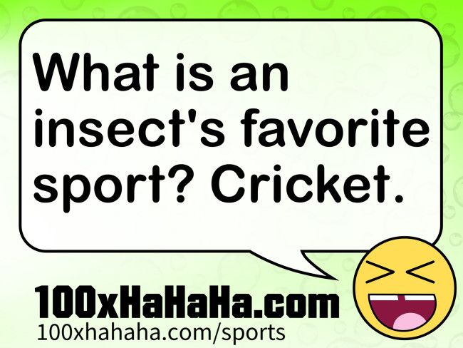 What is an insect's favorite sport? Cricket.