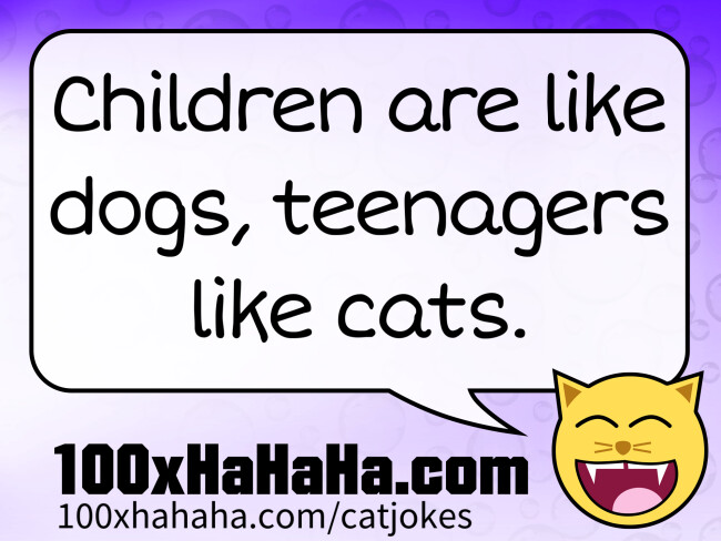 Children are like dogs, teenagers like cats.