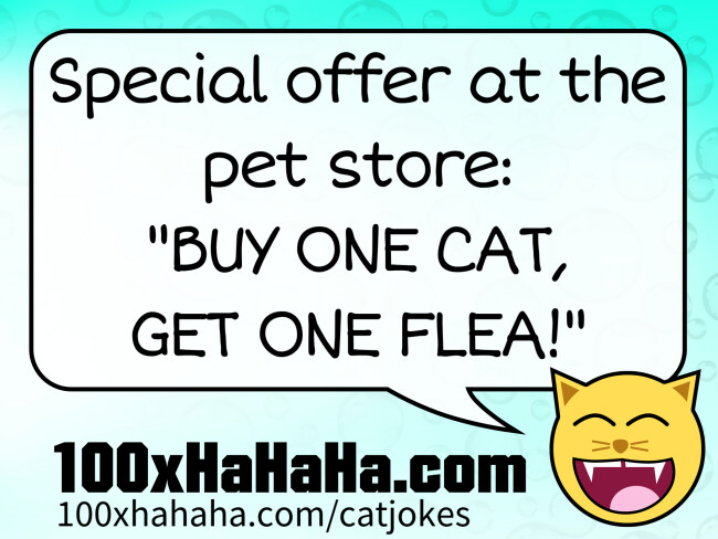 "Special offer at the pet store: ""BUY ONE CAT, GET ONE FLEA!"""