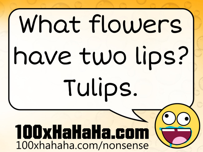 What flowers have two lips? Tulips