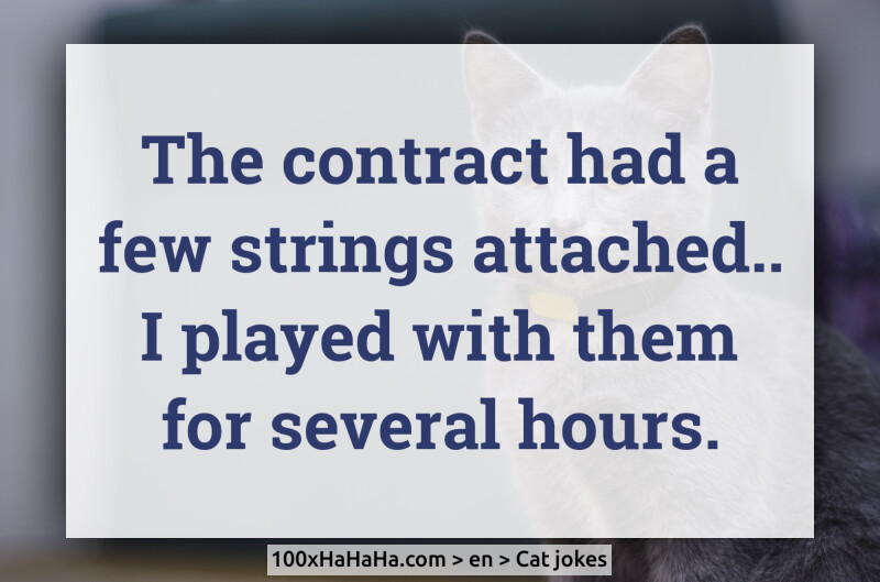 The contract had a few strings attached.. I played with them for several hours.