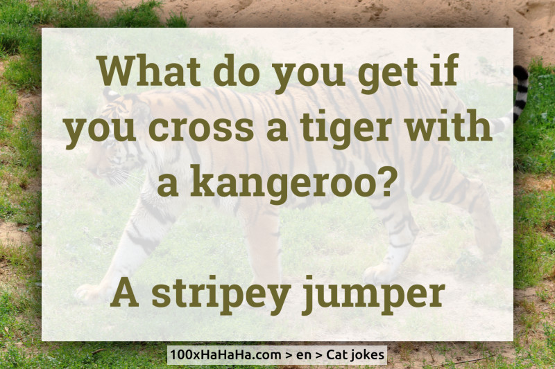 What do you get if you cross a tiger with a kangeroo? / / A stripey jumper
