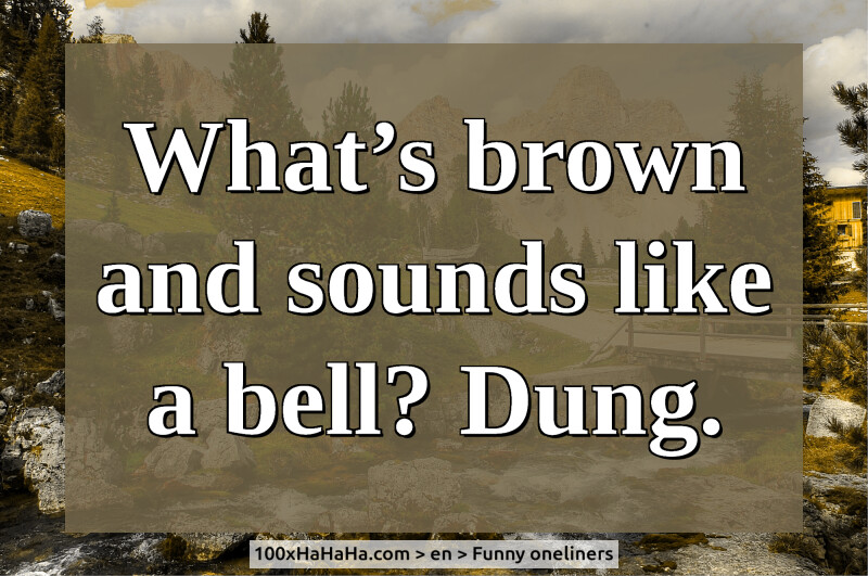What's brown and sounds like a bell? Dung.