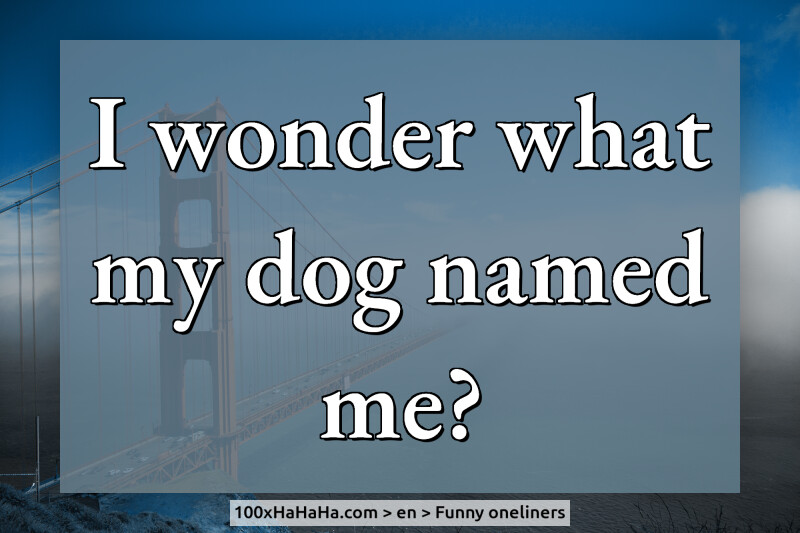 I wonder what my dog named me?