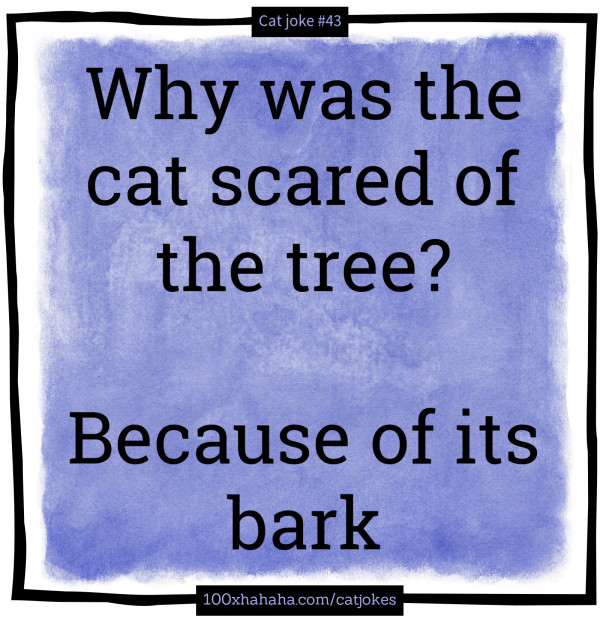 Why was the cat scared of the tree? / / Because of its bark