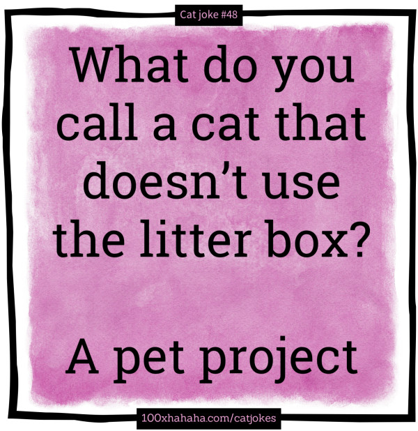 What do you call a cat that doesn't use the litter box? / / A pet project
