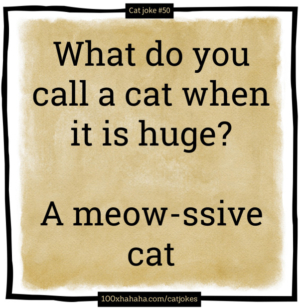 What do you call a cat when it is huge? / / A meow-ssive cat