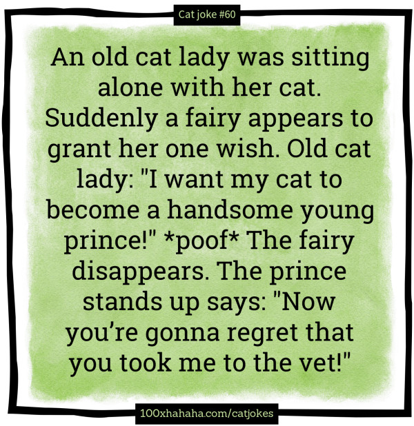 "An old cat lady was sitting alone with her cat. Suddenly a fairy appears to grant her one wish. Old cat lady: ""I want my cat to become a handsome young prince!"" *poof* The fairy disappears. The prince stands up says: ""Now you're gonna regret that you took me to the vet!"""