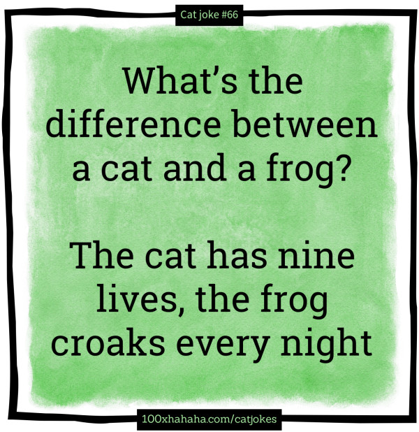 What's the difference between a cat and a frog? / / The cat has nine lives, the frog croaks every night