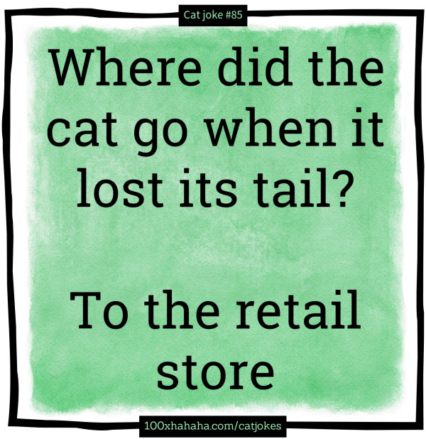 Where did the cat go when it lost its tail? / / To the retail store