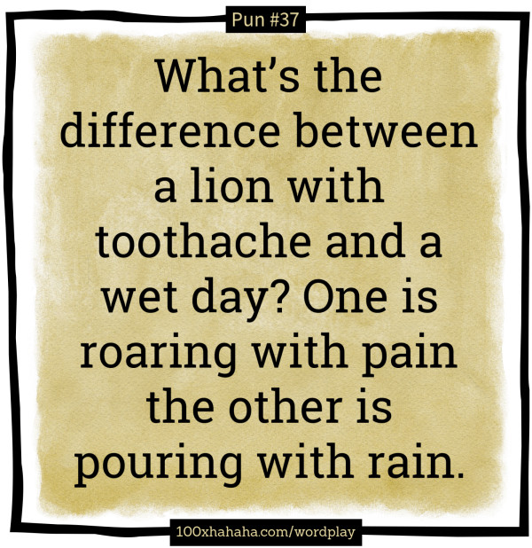 What's The Difference Between A Lion With
