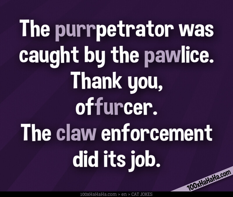 The purrpetrator was caught by the pawlice. Thank you, offurcer. The claw enforcement did its job.