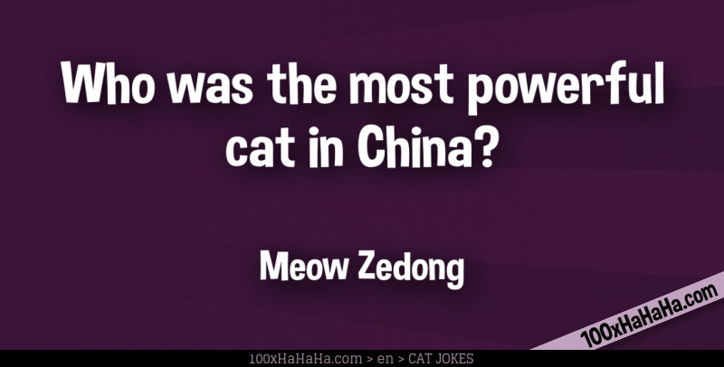 Who was the most powerful cat in China? / / Meow Zedong
