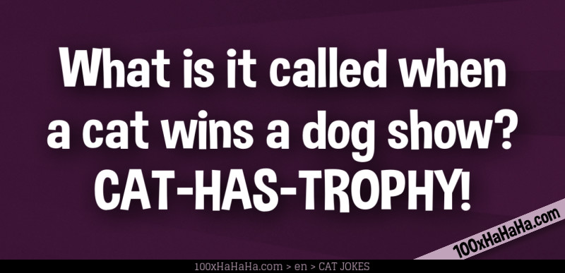 What is it called when a cat wins a dog show? CAT-HAS-TROPHY!