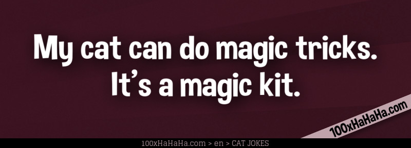 My cat can do magic tricks. It's a magic kit.