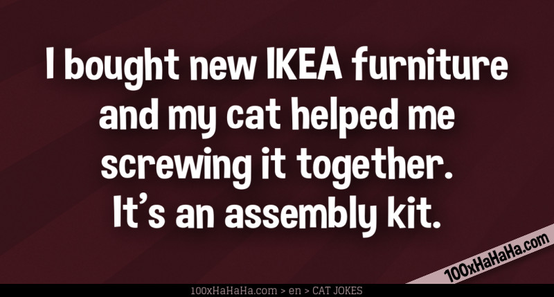 I bought new IKEA furniture and my cat helped me screwing it together. It's an assembly kit.