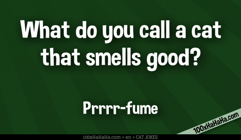 What do you call a cat that smells good? / / Prrrr-fume