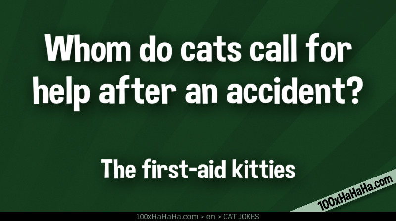 Whom do cats call for help after an accident? / / The first-aid kitties